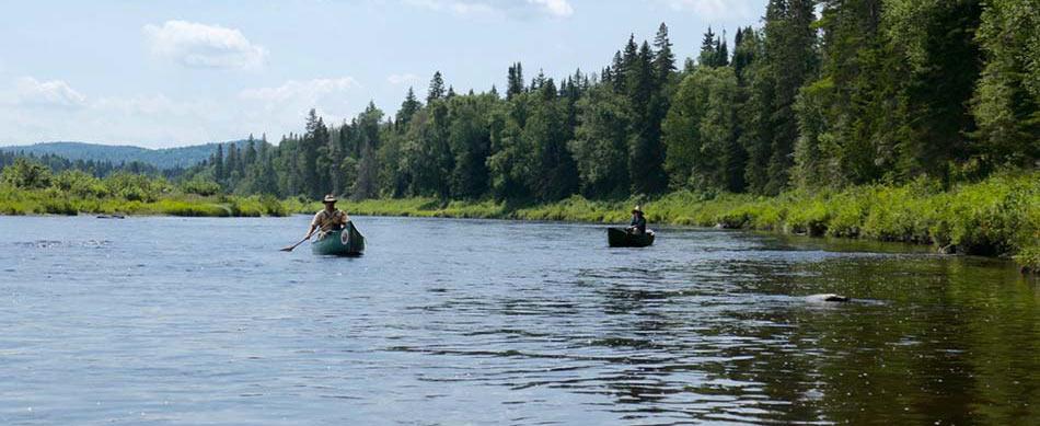 Allagash River Canoe Trips