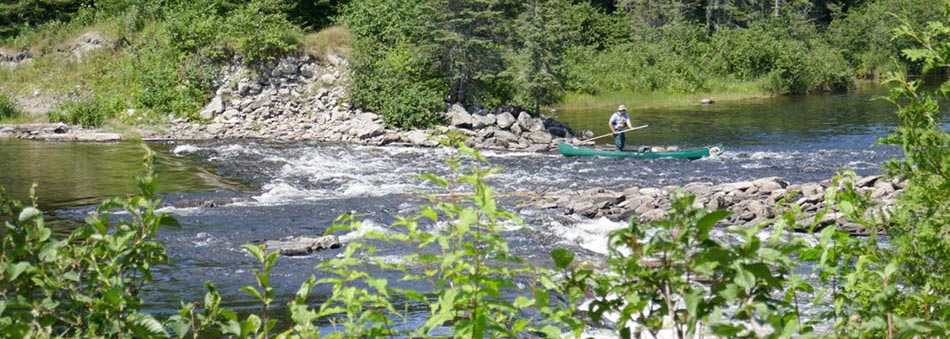 Canoe Trip on the Allagash Waterway, Maine